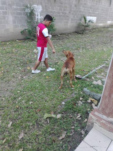 Honduras_h4h_Cholo_Alex
